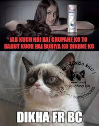 Latest Funny Memes - backchod billi latest collection of backchod billi memes trolls