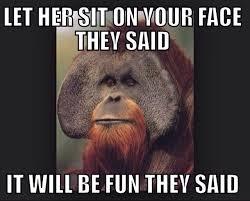 Sit On My Face Meme - sit on my face meme guy