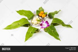 hindu garland garland mango leaves toran image photo bigstock