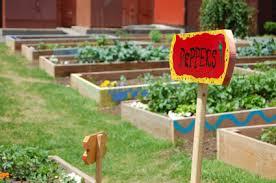 Small Urban Garden - small urban garden design tips
