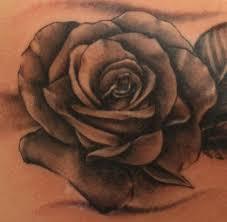 tattoo of a rose hd tattoo flower rose design idea for men and women