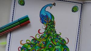 coloring the peacock youtube