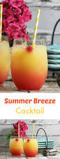 summer breeze cocktail recipe cocktail recipes summer and recipes