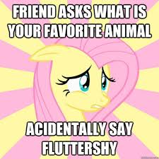Mlp Fluttershy Meme - socially awkward brony my little pony friendship is magic know