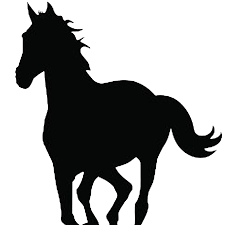 mustang horse silhouette sporthorses from germany news