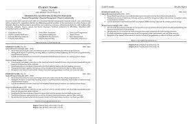 sample resume professional formats