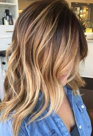 long hair that comes to a point brown bear honey mane interest brunette hair balayage and