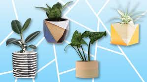 Best Planters | a definitive guide to the best planters on etsy