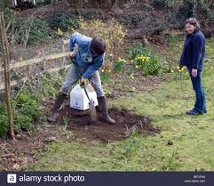 dig hole in garden stock photos u0026 dig hole in garden stock images