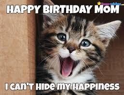 Birthday Meme Cat - kittens happy birthday meme pets wallpapers