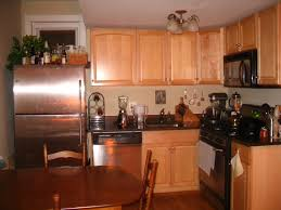 Small L Shaped Kitchen Ideas Kitchen Designs White Cabinets Log Home Small Kitchen Design