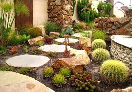 Desert Rock Garden Ideas Desert Rock Garden Ideas Cctus Pirs Nd Cctus Dd Garden State Plaza