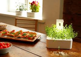 click u0026 grow u0027s new grow light enables smart flower pots to spring