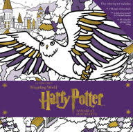harry potter winter hogwarts magical coloring
