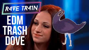 edm trash dove meme rave train youtube
