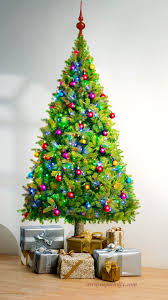 beautiful christmas trees images ngorong club white alder tree