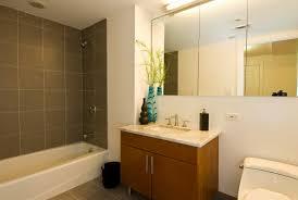 bathroom makeovers makeover small bathroom good home design