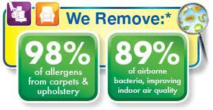 Upholstery Tampa Fl Carpet Cleaning In Tampa Fl Chem Dry Of Tampa