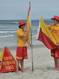 Lifeguard Job Duties For Resume by Surf Life Savers Resume Duties Otago Daily Times Online News