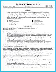 internal auditor resume sample resume for your job application