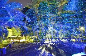 laser landscape lighting with outdoor laser light projector photo
