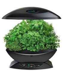 indoor herb garden with artificial lights indoor herb garden