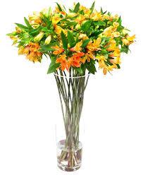 flower subscription flower subscription alstroemeria