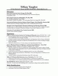 chronological resume exles business resume exles 19 chronological resume sle marketing