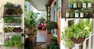 Ideas For Balcony Garden Creative Ideas For Balcony Garden Containers Balcony Garden Web