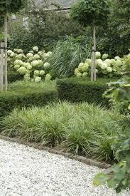 white green garden using texture for interest hydrangea