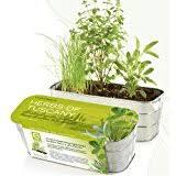 Indoor Herb Garden Kit Indoor Herb Garden Kits Herb Garden Gift Ideas