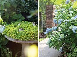 donna mcfeeters backyard garden southern lady magazine