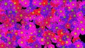 wedding backdrop hd 4k purple wedding background wildflower flowers plants bloom