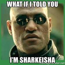 Sharkeisha Meme - sharkeisha meme best shark images 2017
