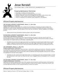 Technician Resume Examples by Mechanic Resume Examples Resume Sample 325x420 Aircraft