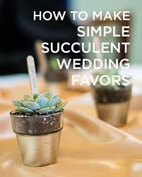 succulent wedding favors succulent wedding favors a simple and beautiful favor idea