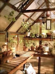 Backyard Greenhouse Designs by Best 25 Greenhouse Interiors Ideas On Pinterest Greenhouses