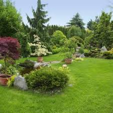 Backyard Lawn Ideas Inspiring Backyard Landscaping Pictures And Ideas Photo Ideas