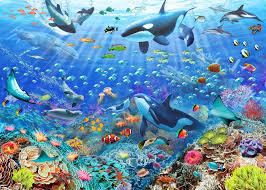 underwater scene wall mural underwater scene wallpaper save your design for later