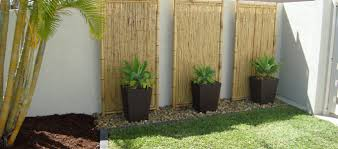 backyard design fabulous grass plan with bamboo fence for simple