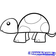 turtle drawing best images collections hd for gadget windows mac