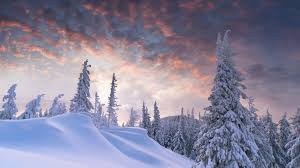 winter snow wallpapers wallpaper wiki
