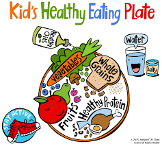 the kid u0027s healthy eating plate is a visual guide to help educate