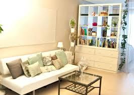 Expedit Room Divider Bookcase Ikea Expedit Shelf Divider Divider Remarkable Small