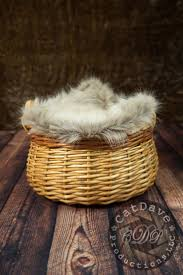 Fox Fur Blanket 27 Best Baby Props Cdp Portraits Are Watermarked Images On