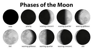 moon phases for stem rocks nerdy mamma