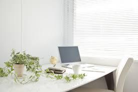 the best indoor plants best indoor house plants low maintenance plants lovell homes