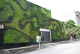 apartment landscaping garden living wall featuring fresh green