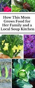 soup kitchen menu ideas best 25 soup kitchen volunteer ideas on community