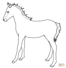 welsh pony coloring page free printable coloring pages